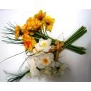 Um.květina mini narcis svazek